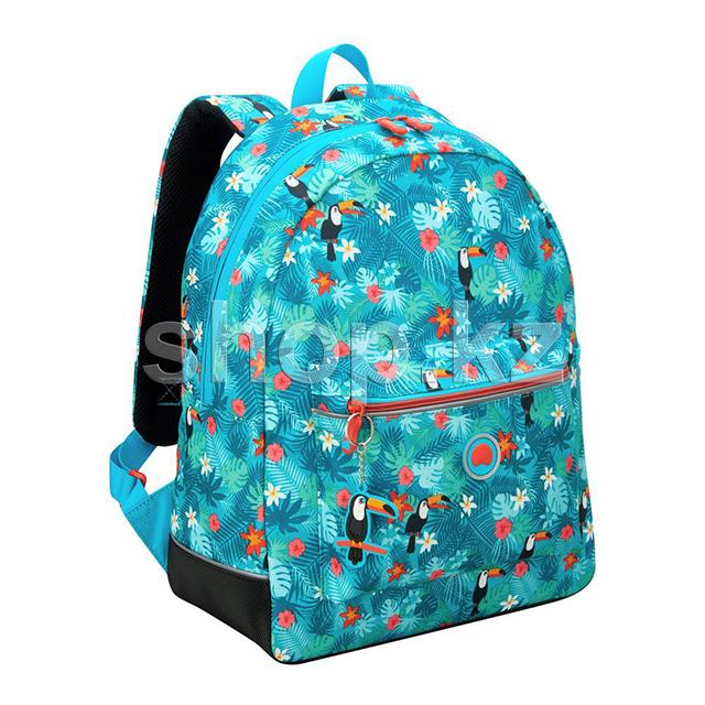 b018d75b13ca Школьный рюкзак Delsey School 2018, Turquoise – купить в интернет ...