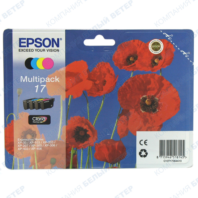 Картридж Epson T17064A, multipack