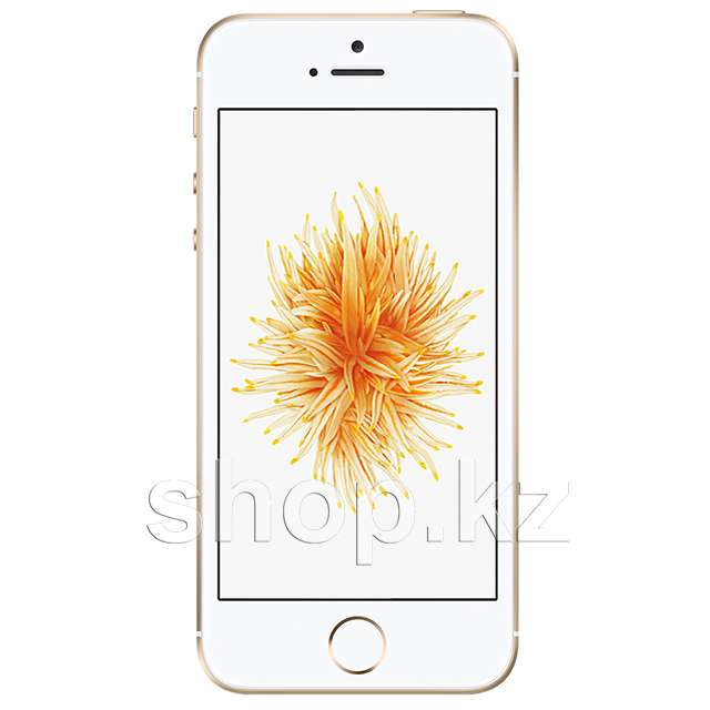 Смартфон Apple iPhone SE, 16Gb, Gold