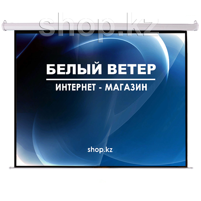 Экран настенный Mr.Pixel MSPSBB96V2